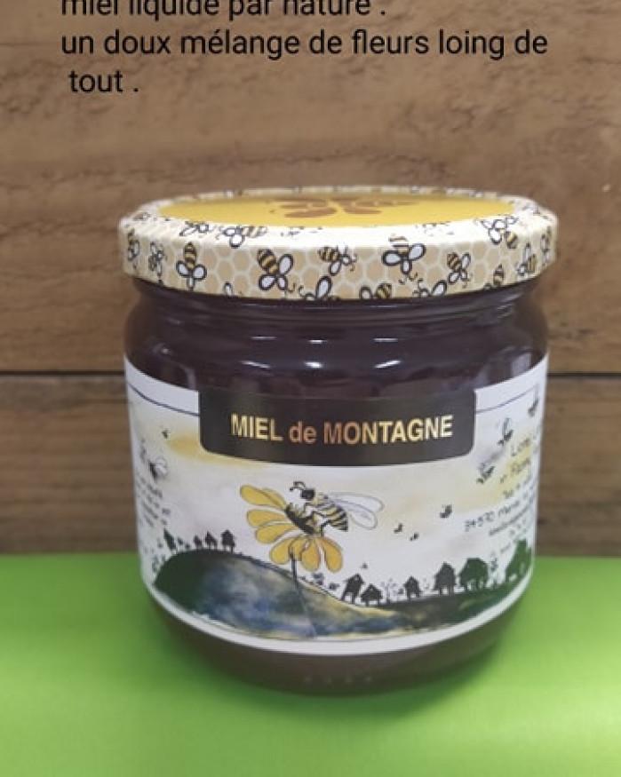 Miel Montagne 500 gr (France)