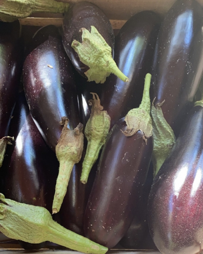 AUBERGINE NOIRE Cat2 CAL MOYEN 300 à 500 g FRANCE PRODUCTION LOCALE