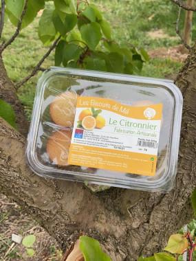 Biscuit Le Citronnier