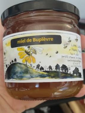 Miel de Buplèvre liquide 500 gr
